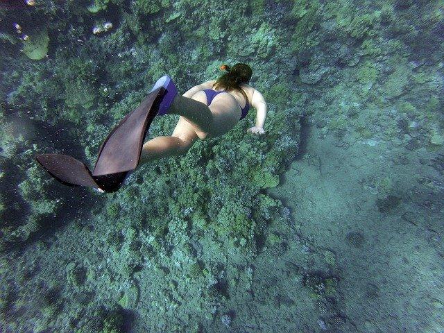 Jak wybrać najlepsze płetwy do pływania?